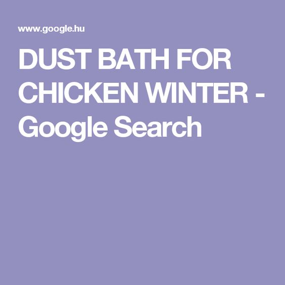 DUST BATH FOR CHICKEN WINTER - Google Search