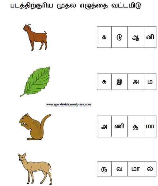 Sample Tamil Worksheets Language Worksheets 2nd Grade Worksheets 1st Grade Worksheets
