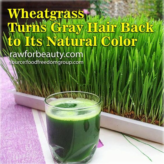 Fact: Cancer cells cannot develop in oxygen rich environments!   Detoxifying is the first step. From there, wheatgrass takes the offensive as a proven anti-cancer agent that stops tumors in their tracks.