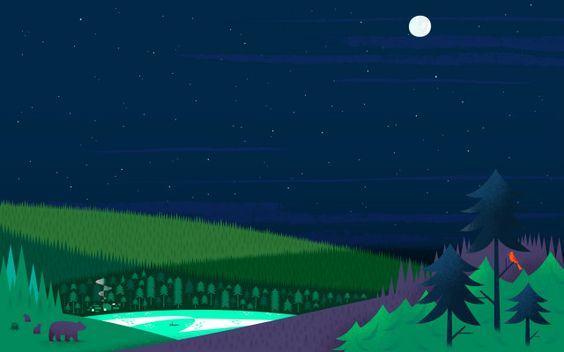google now night forest