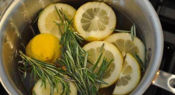 Fácil Rosemary, limão, baunilha Início Scent