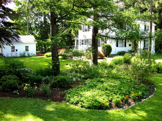 southern garden bed | South-east flower bed