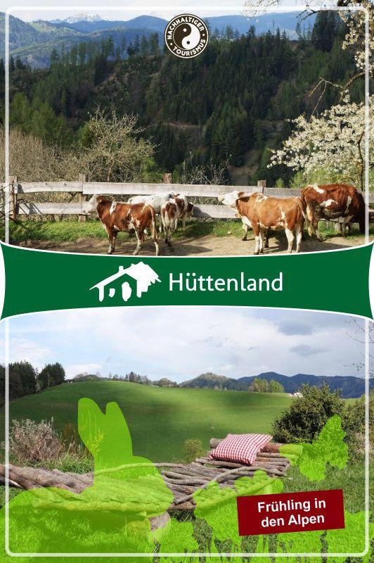 Chalet Tannengrün am Frauenberg   Ferienhaus (stufenfrei)