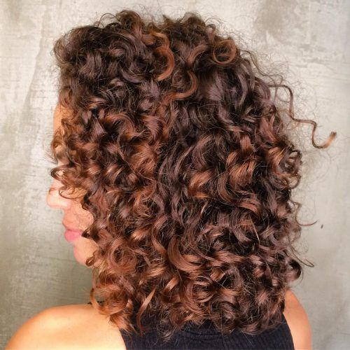 27+ Dark auburn curly hair inspirations