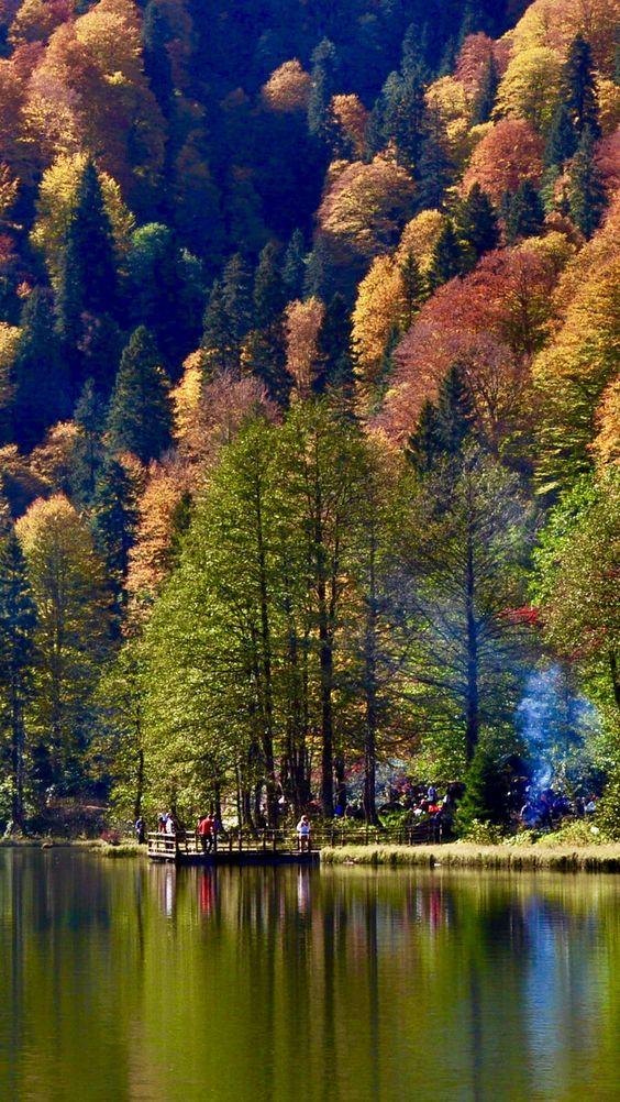 Paisajes de Espejos: El otoño en Gran Bretaña (Fotos) - Página 4 1350409fc9297410534d884824d5e7bc