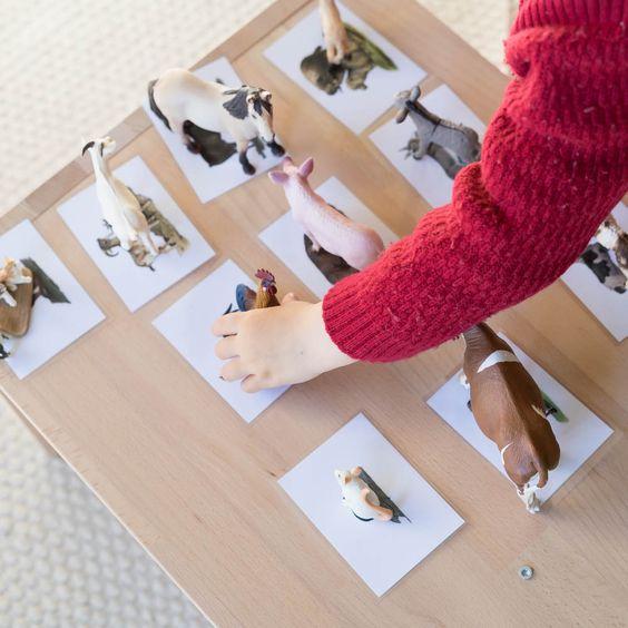 """Die Idee hinter dem Spiel """"Tiere zuordnen"""" ist denkbar einfach: Zu jedem Tier stellt man eine Karte her. Das Kind ordnet diese einander zu. Das war das erste DIY, welches ich in einer Face.."""