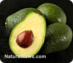 The anti-aging superfood avocado