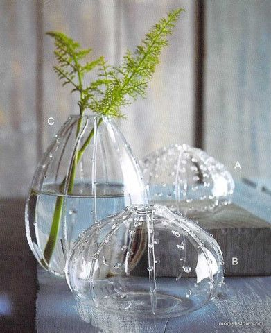 Roost Sea Urchin Vases