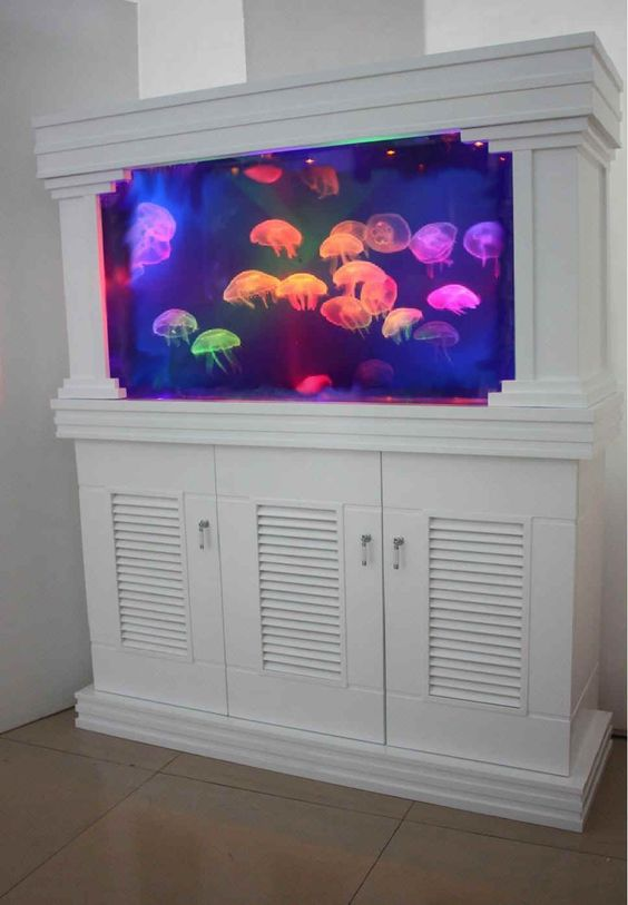 Fish aquariums built ins and jelly fish tanks on pinterest for Fish tank game