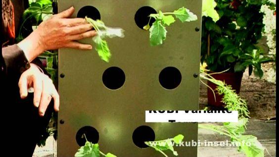 Der kleinste Garten der Welt - KUBI eine Erfolgsgeschichte