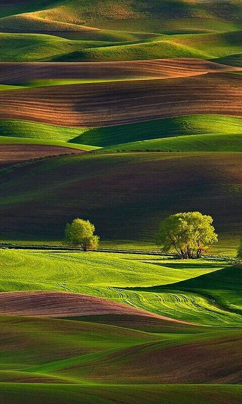70 Attractive Grassland Natural Scenery Is Your Next Travel Destination Page 21 Of 72 With Images Beautiful Landscapes Scenery Landscape