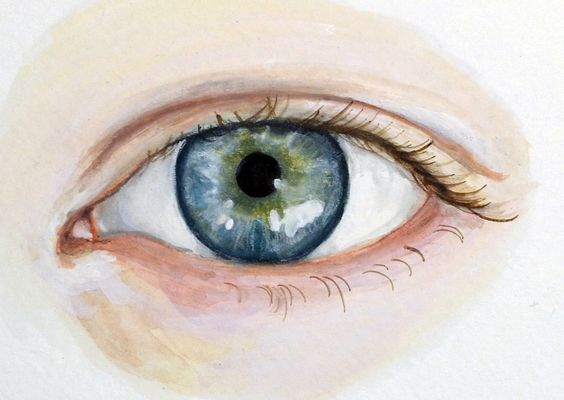 Eye Painting - Custom Eye Portrait - Original Watercolor. $125.00, via Etsy.