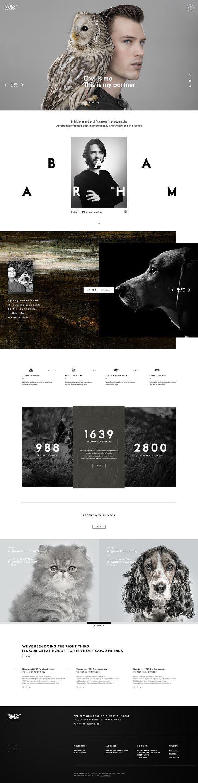Website Design Website Design Website Inspiration Design