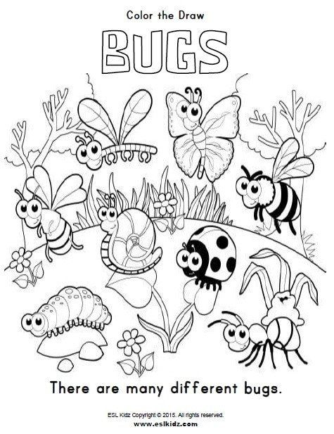 Insects Worksheets For Kindergarten Bugs Activities Games And Worksheets For Kids In 2020 Bug Coloring Pages Detailed Coloring Pages Insect Coloring Pages