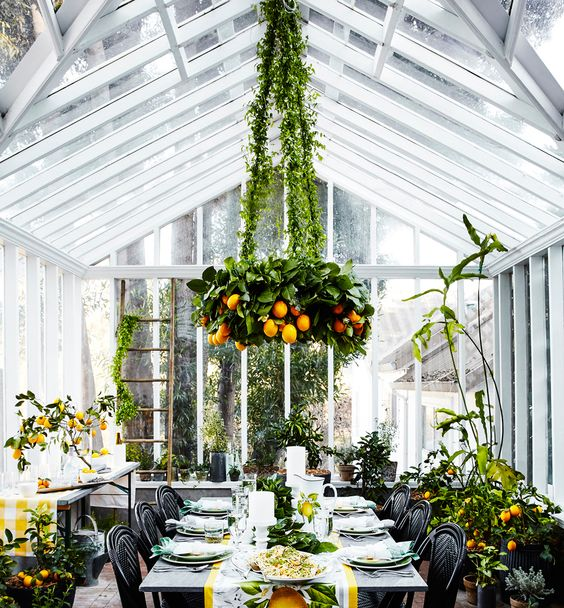 Greenhouse spring party inspired by a citrus grove. | Williams-Sonoma: