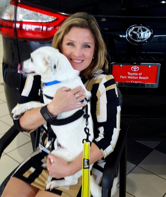 Meet Barney. Steve and Belinda Duke just adopted him from the Eglin Animal Shelter. He is one very happy boy who loves snuggles and belly rubs. #toyotafwb #nationalpuppyday