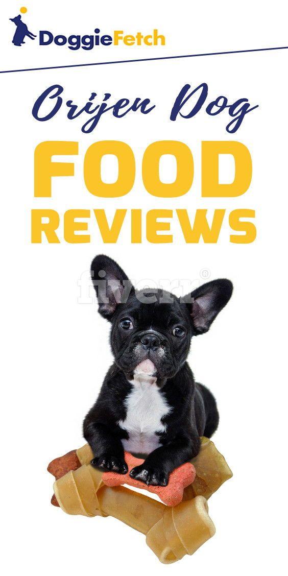 5 Best Orijen Dog Food Reviews Updated 2019 Dog Food Reviews