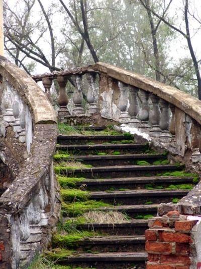 Beautiful stairway in a garden...