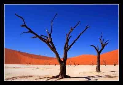 Afrika VI. - Ivan Kenez