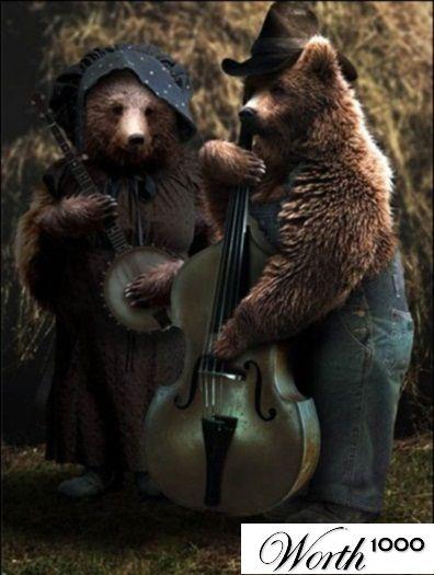 Hoje é dia de rock, bebê! Esses animais talentosos arrasam no mundo musical; espie as fotos - Foto 5 - Bichos - R7