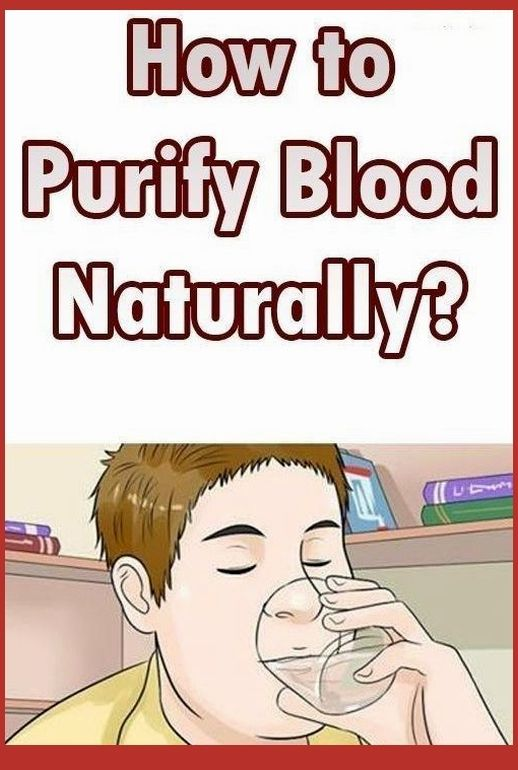 49++ Which organ purifies our blood ideas