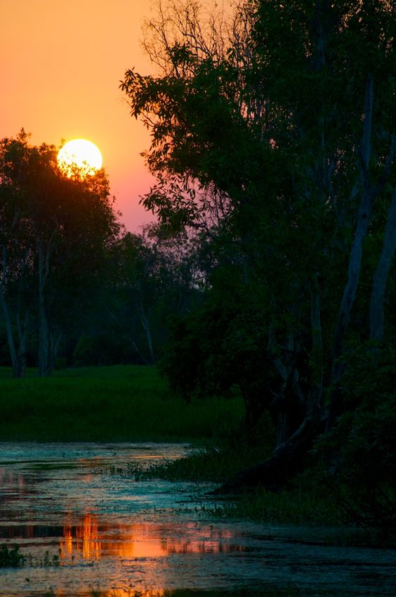 Sunset @ Kakadu National Park, Australia