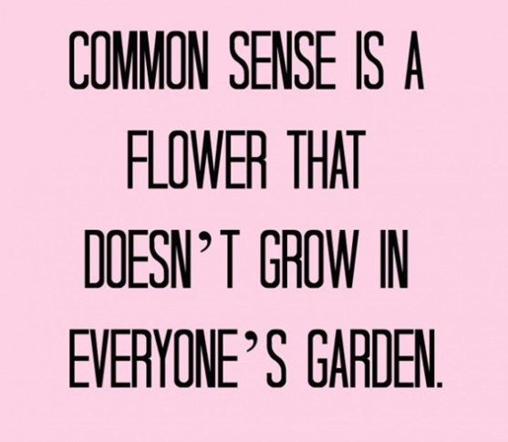 Top 100 Funny Quotes 26 Funny Quotes Inspirational Quotes Quotable Quotes