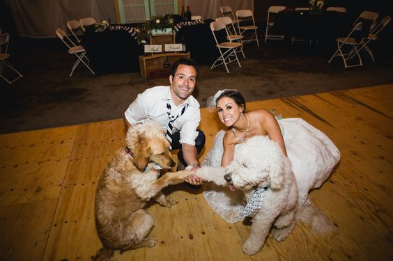 Wedding Puppies .......ZigZags and Blossoming.......: Our Wedding 5.31.14