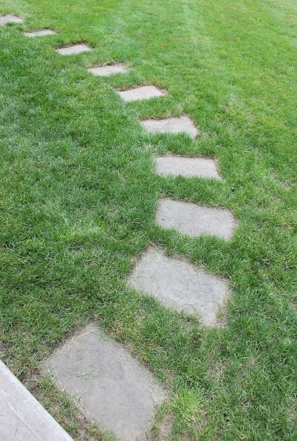 Shine Your Light: Setting A Stepping Stone Path