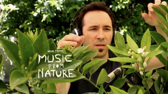 Music from Nature - Diego Stocco