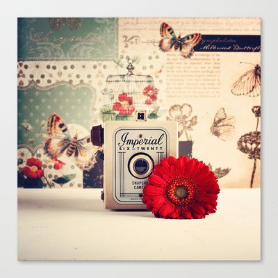 Retro Camera and Red Flower (Retro and Vintage Still Life Photography) Stretched Canvas by AC Photography - $85.00
