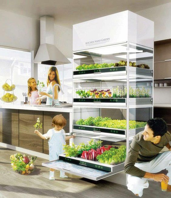 WOW! The future Kitchen with your own vegetable garden which grows food without using harmful fertilizers and pesticides. In the future you will grow what you eat and eat what your grow.
