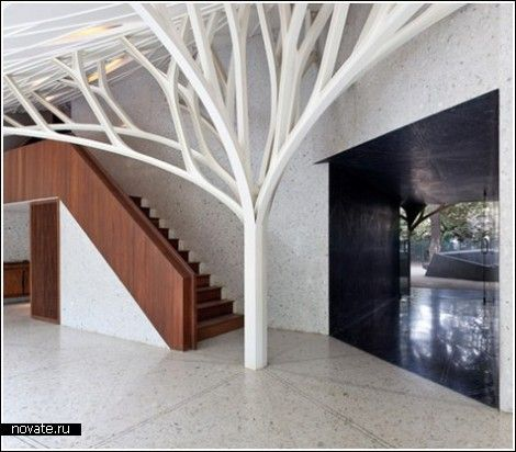this is great.: Interior Design, Coketa Places Spaces, Favorite Places Spaces, Tree Houses, Treein House, Architecture Ideas