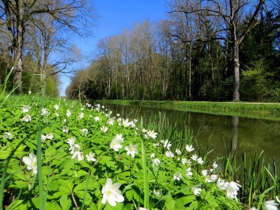 BuOLTL6 Joggingtour am Ludwigkanal von Neumarkt nach Feucht am 21.04.2016 http://laufspass.com/laufberichte/2016/ludwigkanal-04-2016.htm