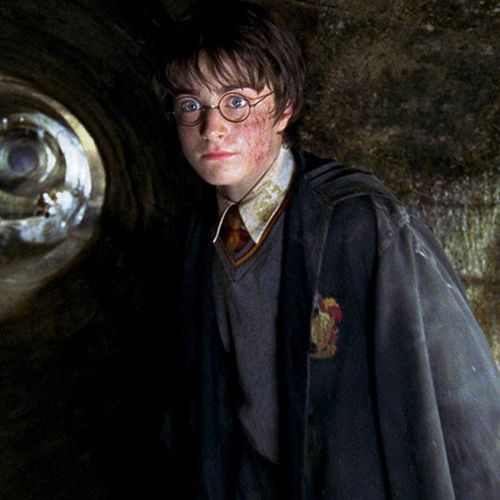 Try Writing I Love Harry Potter Books And Movies In The Comments With Your Eyes Closed Love Harry Potter Harry Potter Harry Harry Potter Fantastic Beasts