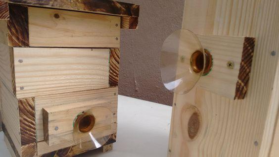 Como fazer uma entrada com proteção para suas abelhas