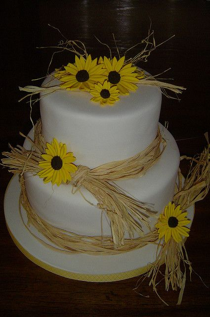 Country Style birthday cake by It's All About the Cake, via Flickr
