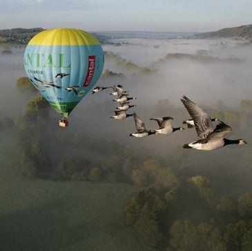 Vol en montgolfière avec option vol avec oiseaux Aurillac Cantal 15 - http://www.sport-decouverte.com/