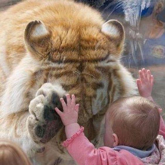 little kids... the best...