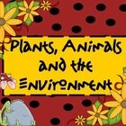 This PowerPoint explores the relationships between plants, animals and the environments they live in. It was used during our lesson on interdependence between animals, plants and the environment.