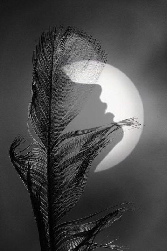 Spirituelle Nature Photographie De Surrealisme Photo Noir Et Blanc Images Romantiques