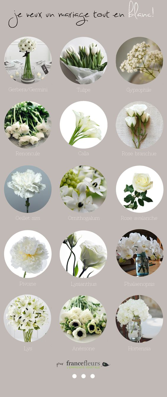 Fleurs de mariage blanches...pour toutes les bride to be un peu perdues, voici un petit récap des fleurs dispo en blanc (attention quand même à la saison!!)