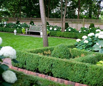 Create formal style in your landscape gardens backyards for Structural plants for small gardens