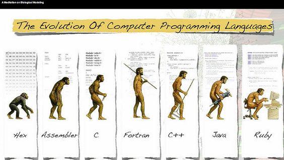 to evolve: to develop gradually