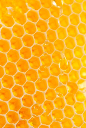 Honey use and production has a long and varied history. In many cultures, honey has associations that go beyond its use as a food. Honey is frequently used as atalismanandsymbolof sweetness.: