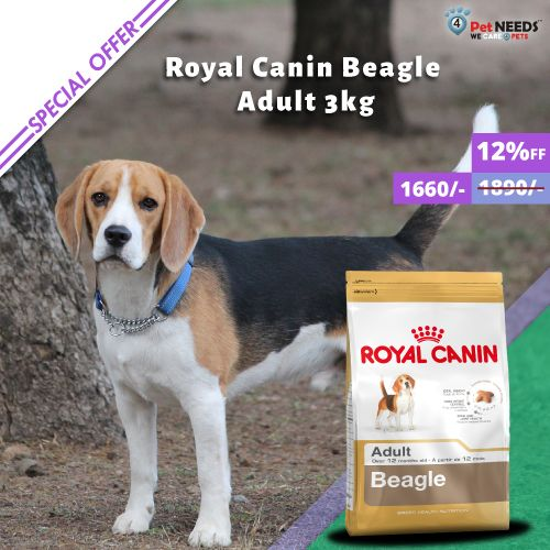 Pin By 4petneeds On Royal Canin Beagle Dog Selfie Cute Dogs