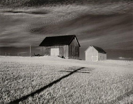 """Minor White, """"Two Barns and Shadow, in the Vicinity of Naples and Dansville,"""" New York 1955"""