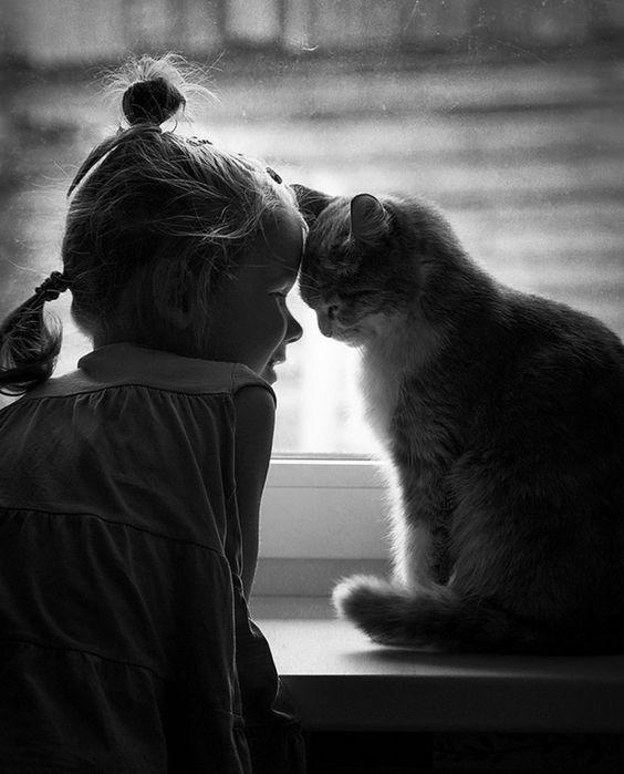 20 fotos revelam o carinho entre crianças e seus gatos | Estilo