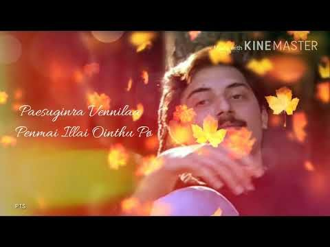 Kadhal Rojave Roja Whatsapp Status Youtube Tamil Video Songs Audio Songs Free Download Song Status