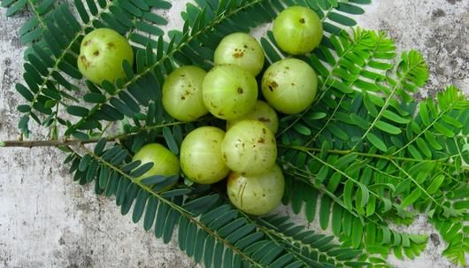 Indian Gooseberry, or Amla, (Emblica officinalis). I found this frozen at an Indian grocery store and picked it up on a whim. I used it in a rice dish with lemon and chaat masala. The flavor is bitter if too much is used, but pleasantly sour with a sweet aftertaste if you get it right. It also left my mouth a little numb, in a fun way.